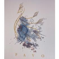 西班牙PAVO孔雀
